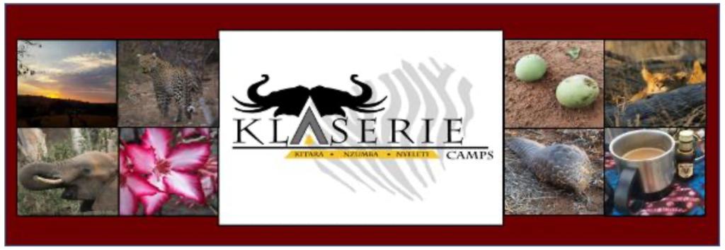 Klaserie Camps Nzumba Kruger Luxury Safari Newsletter Blog