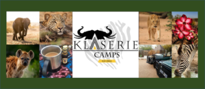 Klaserie Camps Nzumba Kruger Luxury Safari Newsletter Blog